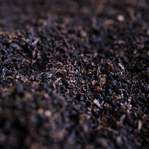 Revital Compost 50